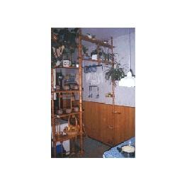 Předělovací květinová stěna s průchodem
